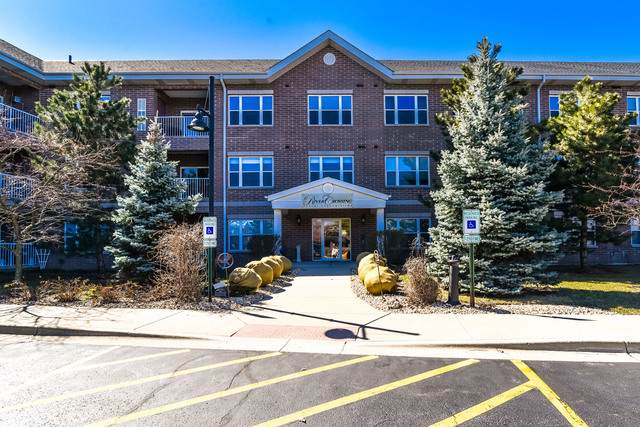 10 N Gilbert Street #205, South Elgin, IL 60177 (MLS #10514705) :: Property Consultants Realty