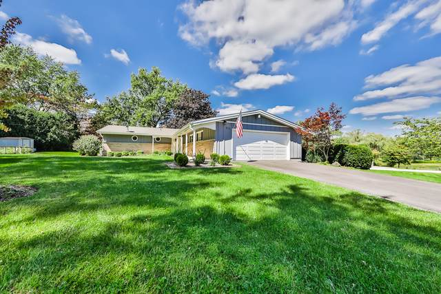 910 N Martin Drive, Palatine, IL 60067 (MLS #10514846) :: The Wexler Group at Keller Williams Preferred Realty