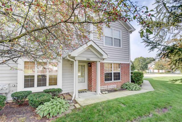 381 Winfield Court, Schaumburg, IL 60194 (MLS #10515045) :: Ani Real Estate