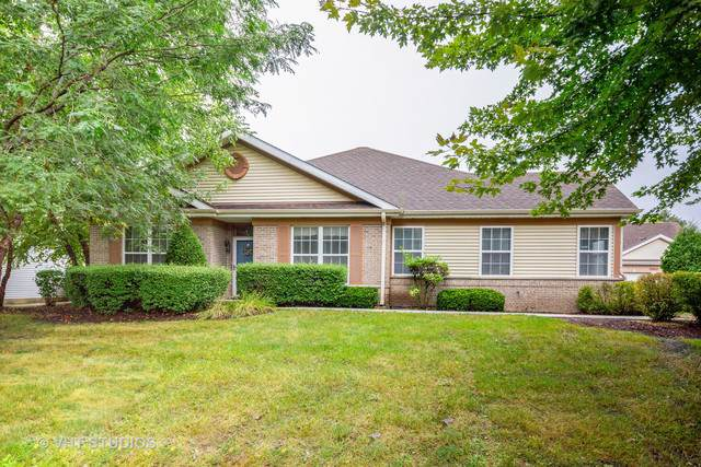20854 W Torrey Pines, Plainfield, IL 60544 (MLS #10515322) :: Property Consultants Realty