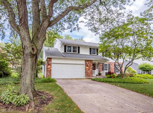 693 Exmoor Terrace, Crystal Lake, IL 60014 (MLS #10515334) :: Property Consultants Realty