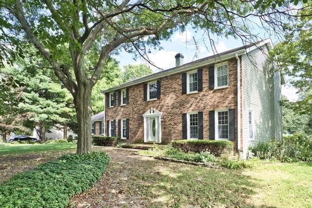 8N849 Hopps Road, Elgin, IL 60124 (MLS #10516076) :: Property Consultants Realty