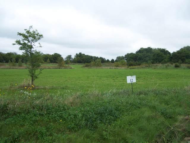 4710 Moraine Trail, Ringwood, IL 60072 (MLS #10516294) :: Ani Real Estate
