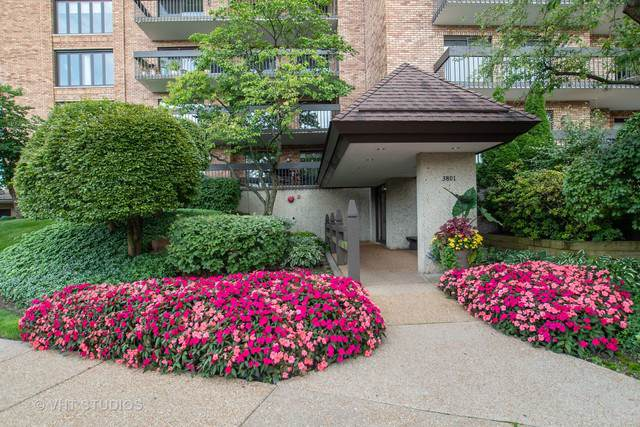 3801 Mission Hills Road #305, Northbrook, IL 60062 (MLS #10516313) :: Berkshire Hathaway HomeServices Snyder Real Estate