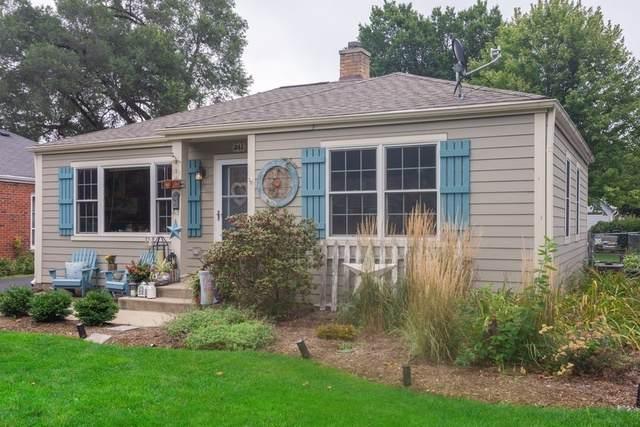 341 N Schiller Street, Palatine, IL 60067 (MLS #10516322) :: Ryan Dallas Real Estate