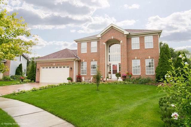 4602 Windstar Circle, Carpentersville, IL 60110 (MLS #10516539) :: BNRealty