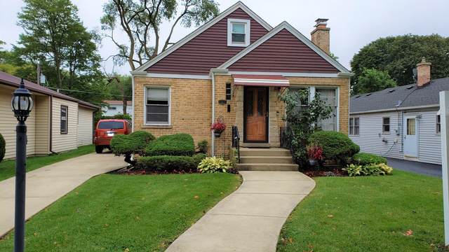 1167 Webster Lane, Des Plaines, IL 60016 (MLS #10516541) :: Property Consultants Realty