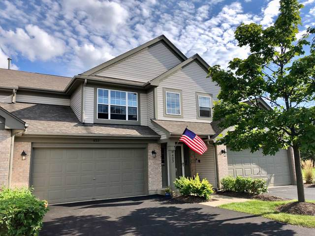 433 Ashwood Court #433, Lindenhurst, IL 60046 (MLS #10516556) :: Property Consultants Realty