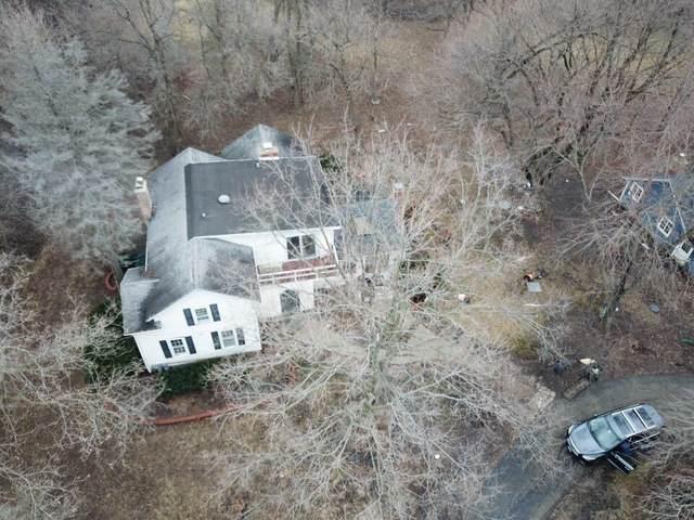 51 Witt Road, South Barrington, IL 60010 (MLS #10517105) :: Angela Walker Homes Real Estate Group