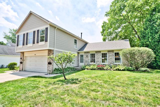 1008 Hobson Drive, Buffalo Grove, IL 60089 (MLS #10517145) :: Baz Realty Network | Keller Williams Elite