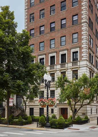 1366 N Dearborn Street 6BC, Chicago, IL 60610 (MLS #10517288) :: Property Consultants Realty