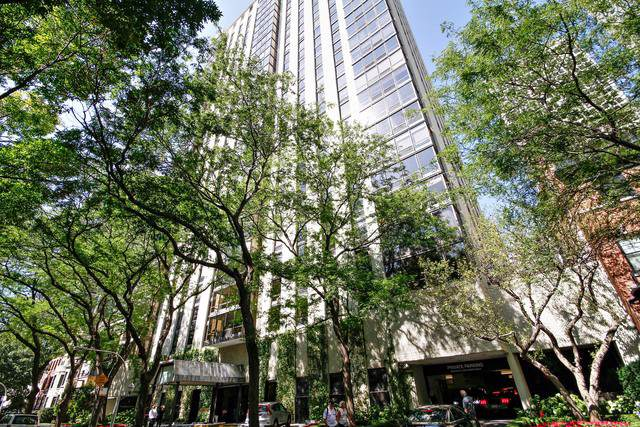 100 E Bellevue Place 32AB, Chicago, IL 60611 (MLS #10517846) :: Property Consultants Realty