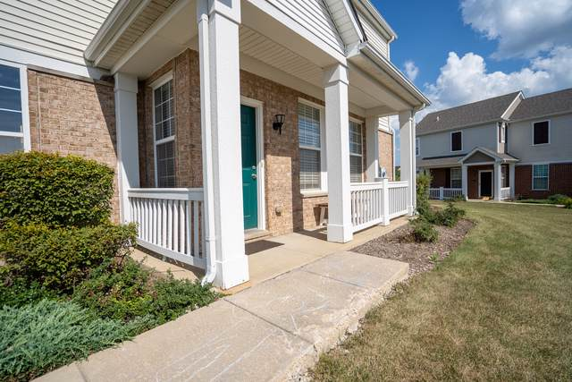 1112 Heron Circle, Joliet, IL 60431 (MLS #10517887) :: Property Consultants Realty