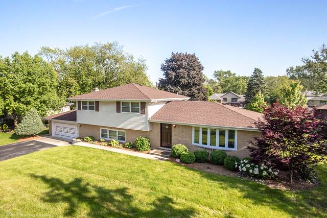 6121 James Street, Tinley Park, IL 60477 (MLS #10518192) :: Property Consultants Realty