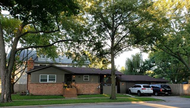 1255 Center Street, Des Plaines, IL 60018 (MLS #10518240) :: Property Consultants Realty
