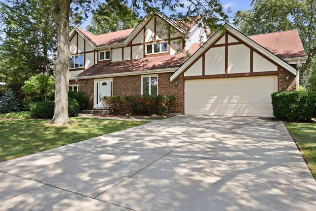 3501 Wilshire Drive, Hoffman Estates, IL 60067 (MLS #10518414) :: Ani Real Estate