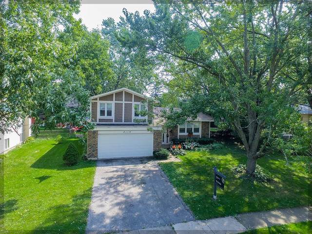 8119 Leawood Lane, Woodridge, IL 60517 (MLS #10518707) :: Property Consultants Realty