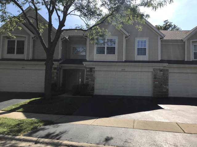 2895 Ashling Court, Schaumburg, IL 60193 (MLS #10518856) :: Ani Real Estate
