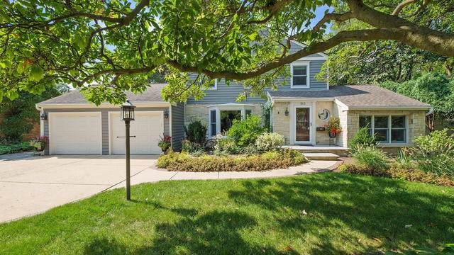 810 N Waiola Avenue, La Grange Park, IL 60526 (MLS #10518892) :: Ani Real Estate
