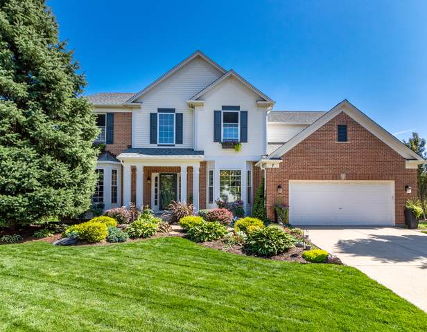 7 Thistle Court, Streamwood, IL 60107 (MLS #10519150) :: Ani Real Estate