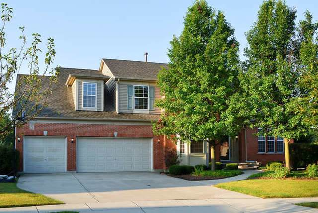 8 Thistle Court, Streamwood, IL 60107 (MLS #10519269) :: Ani Real Estate
