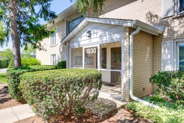 1830 W Surrey Park Lane 1A, Arlington Heights, IL 60005 (MLS #10519382) :: Century 21 Affiliated