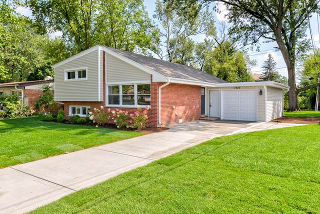 7343 Lyons Street, Morton Grove, IL 60053 (MLS #10519463) :: Ani Real Estate