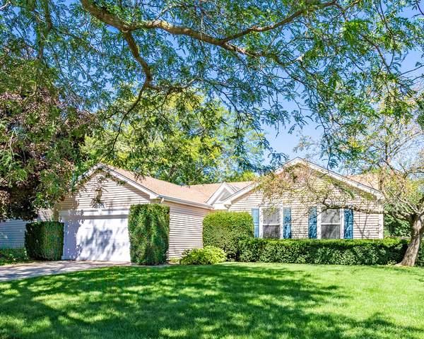 2212 Kensington Drive, Schaumburg, IL 60194 (MLS #10519742) :: Ani Real Estate