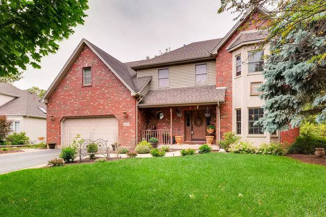 249 Willowwood Drive, Oswego, IL 60543 (MLS #10519750) :: Property Consultants Realty