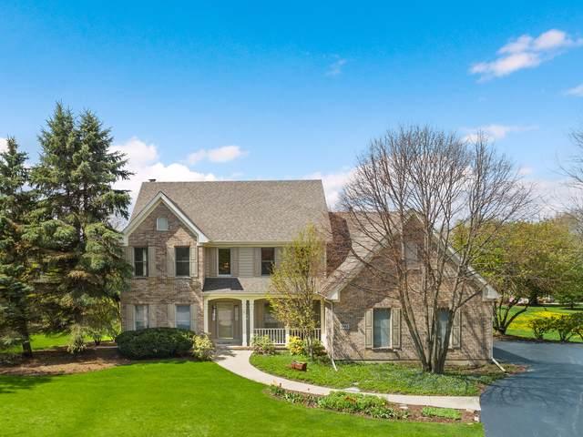 993 Black Walnut Drive, Sugar Grove, IL 60554 (MLS #10519767) :: Berkshire Hathaway HomeServices Snyder Real Estate