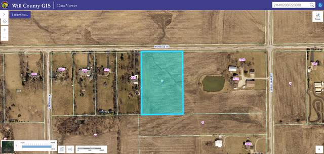 6521 W Dralle Road, Monee, IL 60449 (MLS #10519825) :: Berkshire Hathaway HomeServices Snyder Real Estate