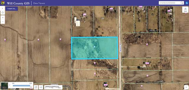 24600 S Murphy Lane, Monee, IL 60449 (MLS #10519830) :: Berkshire Hathaway HomeServices Snyder Real Estate