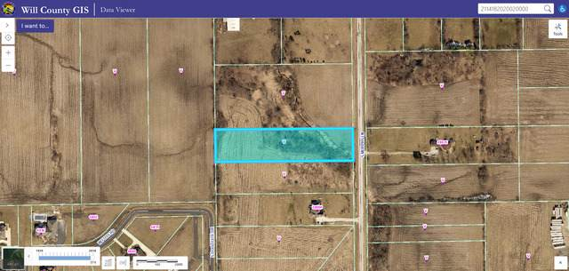 24700 S Murphy Lane, Monee, IL 60449 (MLS #10519834) :: Berkshire Hathaway HomeServices Snyder Real Estate