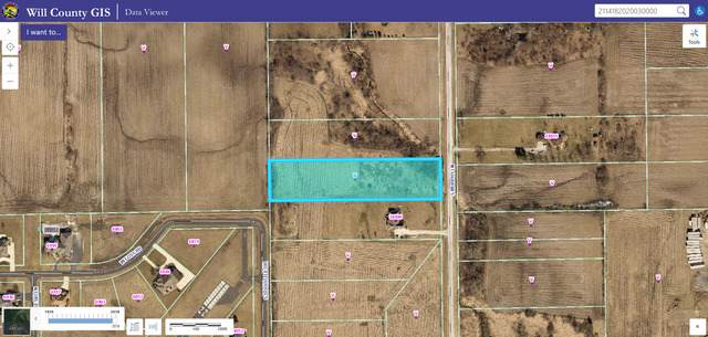 24800 S Murphy Lane, Monee, IL 60449 (MLS #10519835) :: Berkshire Hathaway HomeServices Snyder Real Estate