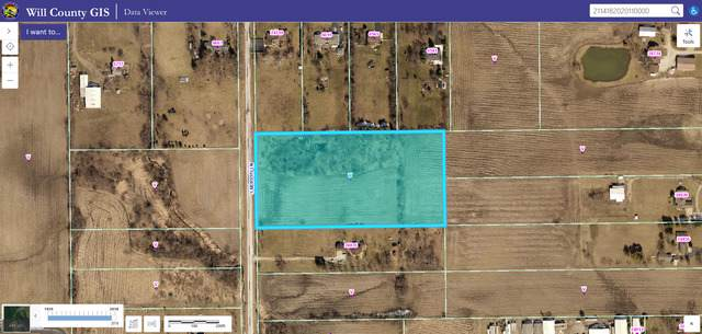24825 S Murphy Road, Monee, IL 60449 (MLS #10519837) :: Berkshire Hathaway HomeServices Snyder Real Estate