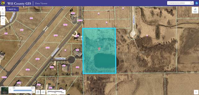 26000 S Murphy Lane, Monee, IL 60449 (MLS #10519851) :: Berkshire Hathaway HomeServices Snyder Real Estate