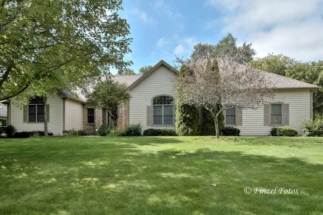 3619 N Riverside Drive, Johnsburg, IL 60051 (MLS #10520106) :: BNRealty