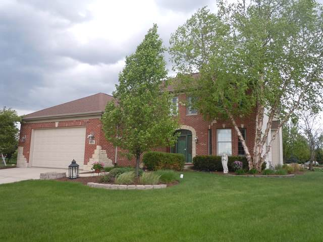16318 Shawnee Drive, Lockport, IL 60441 (MLS #10520159) :: BNRealty
