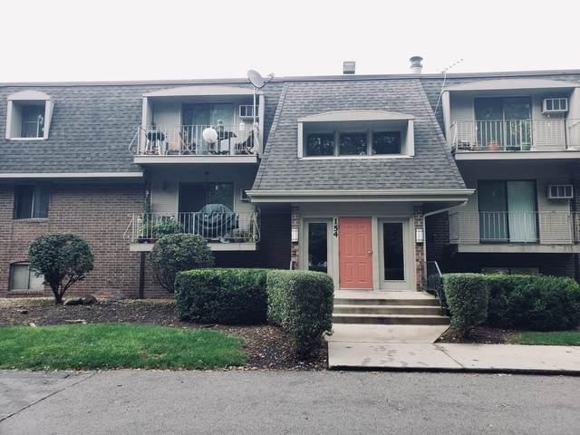 154 E Bailey Road M, Naperville, IL 60565 (MLS #10520420) :: Ryan Dallas Real Estate