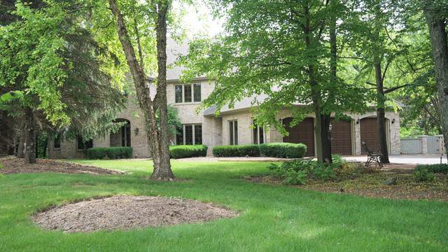 21 Canyon Court, Yorkville, IL 60560 (MLS #10520441) :: O'Neil Property Group
