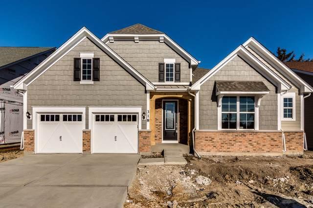317 Palomino Trail, Willowbrook, IL 60527 (MLS #10520501) :: Ryan Dallas Real Estate