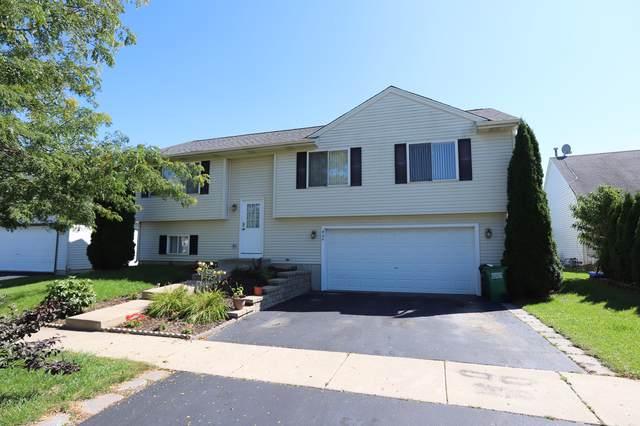 904 Joanne Lane, Harvard, IL 60033 (MLS #10520533) :: Ryan Dallas Real Estate