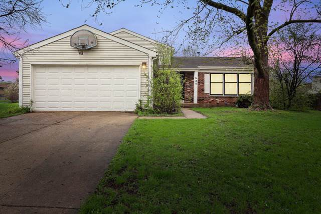 620 Caren Drive, Buffalo Grove, IL 60089 (MLS #10520552) :: Berkshire Hathaway HomeServices Snyder Real Estate