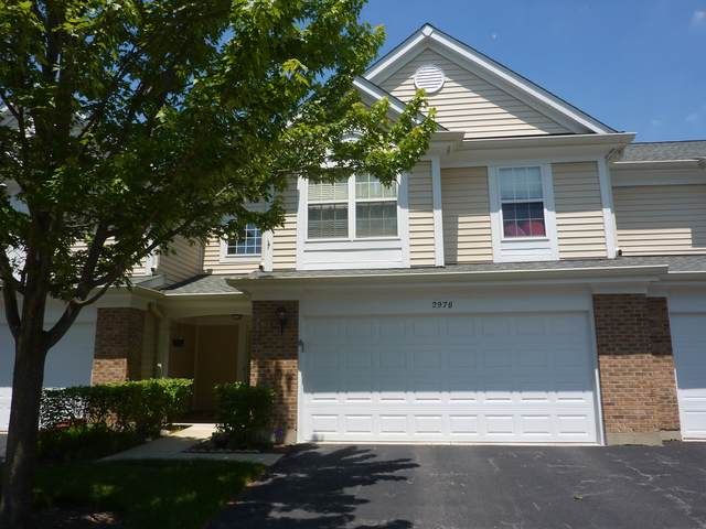 2978 Belle Lane, Schaumburg, IL 60193 (MLS #10520567) :: Ani Real Estate