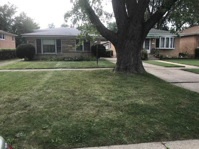 8032 Central Avenue, Morton Grove, IL 60053 (MLS #10520722) :: Ani Real Estate