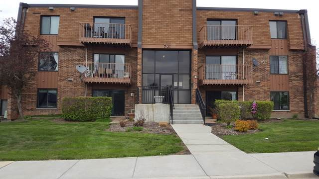 701 Limerick Lane 3D, Schaumburg, IL 60193 (MLS #10520727) :: Berkshire Hathaway HomeServices Snyder Real Estate