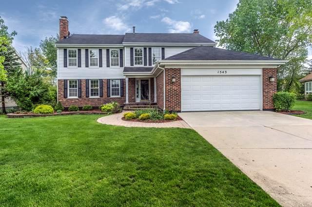 1543 W Edgewater Lane, Palatine, IL 60067 (MLS #10520781) :: Ani Real Estate