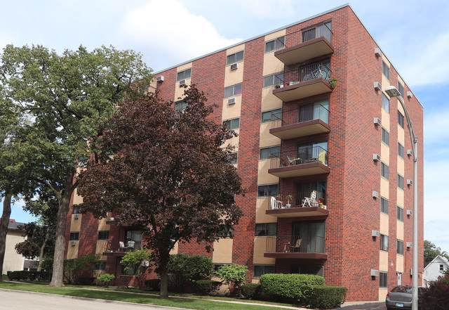 7320 Dixon Street #405, Forest Park, IL 60130 (MLS #10520795) :: Century 21 Affiliated