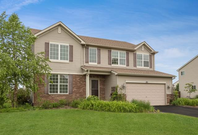 801 Parkside Lane, Yorkville, IL 60560 (MLS #10521211) :: O'Neil Property Group