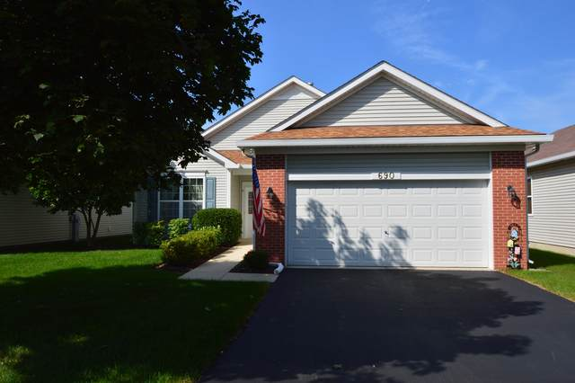 690 S Wellston Lane, Romeoville, IL 60446 (MLS #10521259) :: Property Consultants Realty